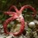 Bild des Benutzers anasipu